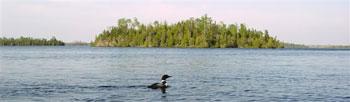 Loon-Seagull-Lake