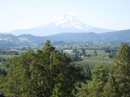 Glorious-Mt.-Hood