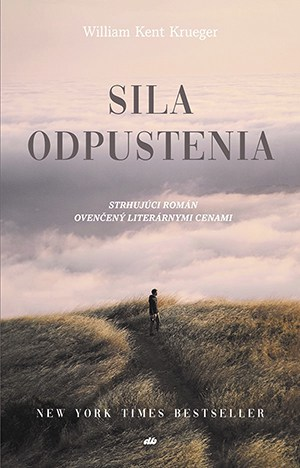 Ordinary Grace - Slovak Language Cover - Sila Odpustenia